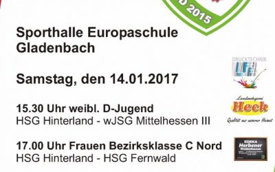 Handball Heimspieltag am 14.01.2017