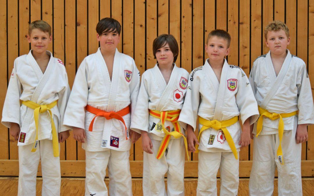 Judo Hessische U11 und U13 in Frankfurt